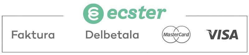 ecster-logos
